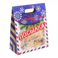 Подарочный пакет Посылка от Деда Мороза ML