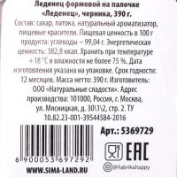 Леденец на палочке в форме пениса Леденец XXL, со вкусом черники, 390 гр