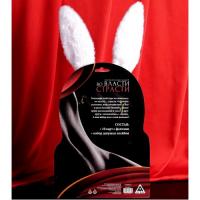 Эротический набор Во власти страсти: Девушка-плейбой - ободок с ушками, галстук-бабочка, 10 карт
