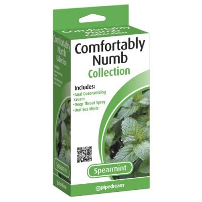 Набор для орального секса+ анальная смазка Comfortably Numb Pleasure Kit - Spearmint